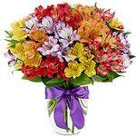 Альстромерії - цветы и букеты на uaflorist.com