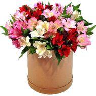 Альстромерии в коробці - цветы и букеты на uaflorist.com