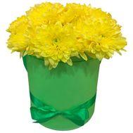Желтые хризантемы в коробке - цветы и букеты на uaflorist.com