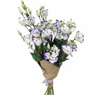 Bouquet of white and purple eustoma - flowers and bouquets on uaflorist.com