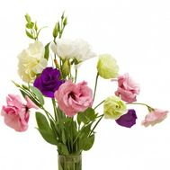 Small bouquet of eustoma - flowers and bouquets on uaflorist.com
