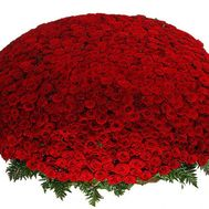 A huge flower of 1001 red roses - flowers and bouquets on uaflorist.com