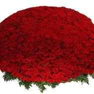 Огромный букет цветов из 1001 красной розы - цветы и букеты на uaflorist.com