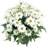 Bouquet of flowers 9 chamomile chrysanthemums - flowers and bouquets on uaflorist.com