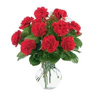 Bouquet of 13 red carnations - flowers and bouquets on uaflorist.com