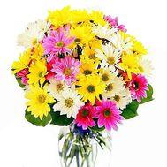 Букет цветов 11 ромашковидных хризантем - цветы и букеты на uaflorist.com
