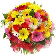 Bouquet of flowers from 45 gerberas - flowers and bouquets on uaflorist.com