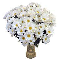 Букет цветов 15 ромашек (ромашковидных хризантем) - цветы и букеты на uaflorist.com