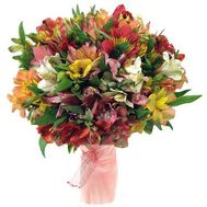 A bunch of 31 alstroemerias - flowers and bouquets on uaflorist.com