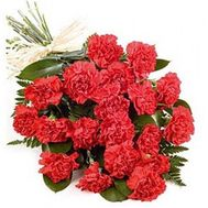 Bouquet of flowers from 25 carnations - flowers and bouquets on uaflorist.com