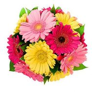 A bouquet of 13 gerberas flowers - flowers and bouquets on uaflorist.com