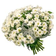 19 white chamomile chrysanthemums - flowers and bouquets on uaflorist.com