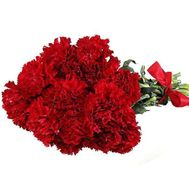 Bouquet of flowers from 17 carnations - flowers and bouquets on uaflorist.com