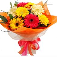 A bunch of flowers of 9 gerberas - flowers and bouquets on uaflorist.com