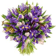 A bunch of 35 irises and 22 tulips - flowers and bouquets on uaflorist.com