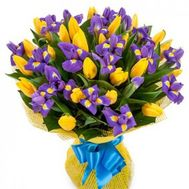 Bouquet of 26 tulips and 19 irises - flowers and bouquets on uaflorist.com