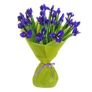 A bunch of 21 blue irises - flowers and bouquets on uaflorist.com