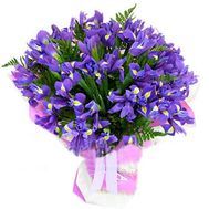 A bunch of 35 blue irises - flowers and bouquets on uaflorist.com