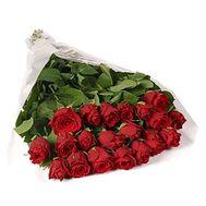 21 червона імпортна троянда - цветы и букеты на uaflorist.com