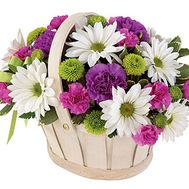 Basket of flowers made of 8 chrysanthemums and 9 cloves - flowers and bouquets on uaflorist.com