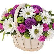 Корзина цветов из 8 хризантем и 9 гвоздик - цветы и букеты на uaflorist.com