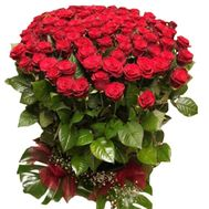 A large bouquet of 101 red roses - flowers and bouquets on uaflorist.com