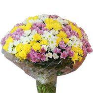 Букет із 55 хризантем - цветы и букеты на uaflorist.com