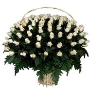 A huge basket of 101 white imported roses - flowers and bouquets on uaflorist.com