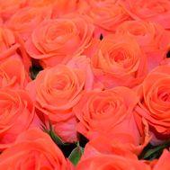 Оранжевые розы поштучно - цветы и букеты на uaflorist.com