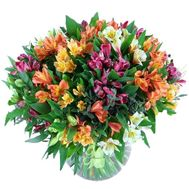 Bouquet of 55 alstroemerias - flowers and bouquets on uaflorist.com