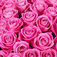 To select the number of roses, click on the photo - flowers and bouquets on uaflorist.com