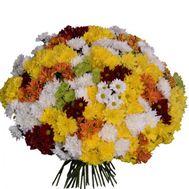 Букет из 75 хризантем - цветы и букеты на uaflorist.com