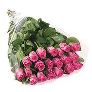 21 рожева імпортна троянда - цветы и букеты на uaflorist.com