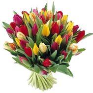 Букет из 55 разноцветных тюльпанов - цветы и букеты на uaflorist.com