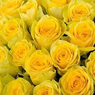 Желтые розы поштучно - цветы и букеты на uaflorist.com