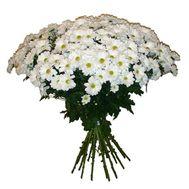 17 ромашковых хризантем - цветы и букеты на uaflorist.com