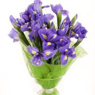 17 irises - flowers and bouquets on uaflorist.com