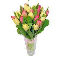 Букет из 23 тюльпанов - цветы и букеты на uaflorist.com