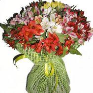 35 alstromeries - flowers and bouquets on uaflorist.com