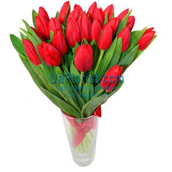 Букеты, букет из 25 тюльпанов купить украина