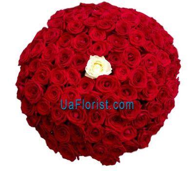"""""""101 красная роза с одной белой"""" в интернет-магазине цветов uaflorist.com"""