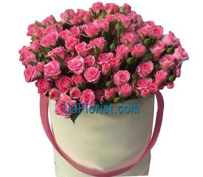 """25 pink bush roses in the box"" in the online flower shop uaflorist.com"