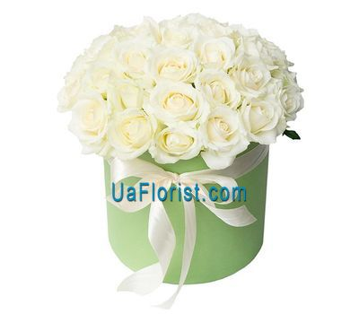"""""""31 white rose in the box"""" in the online flower shop uaflorist.com"""