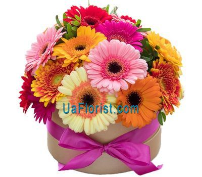 """Gerberas in the box"" in the online flower shop uaflorist.com"