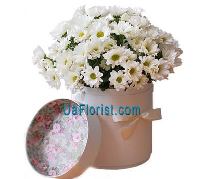 """Daisies in the box"" in the online flower shop uaflorist.com"