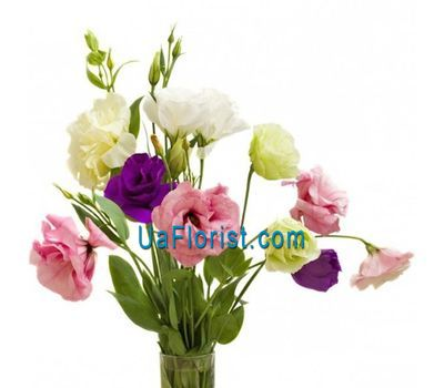 """""""Small bouquet of eustoma"""" in the online flower shop uaflorist.com"""