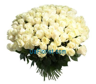 """""""A bouquet of 151 white imported roses"""" in the online flower shop uaflorist.com"""