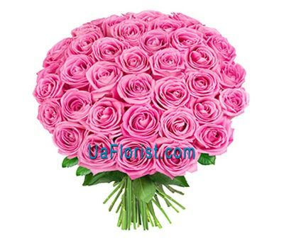 """41 pink rose"" in the online flower shop uaflorist.com"