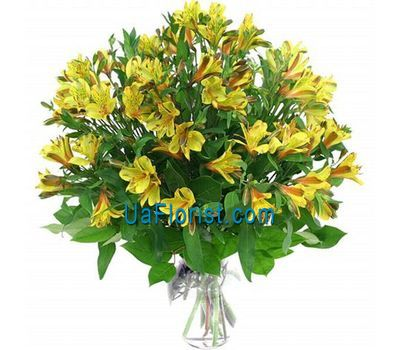 """A bunch of flowers from 9 alstroemerias"" in the online flower shop uaflorist.com"