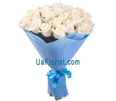 """35 white roses"" in the online flower shop uaflorist.com"